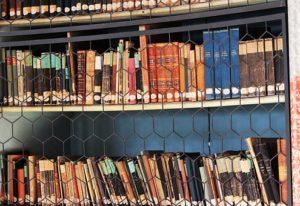 ترجمه و ویرایش تخصصی مقالات و متون